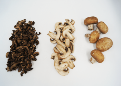 nuwave-research-mushrooms
